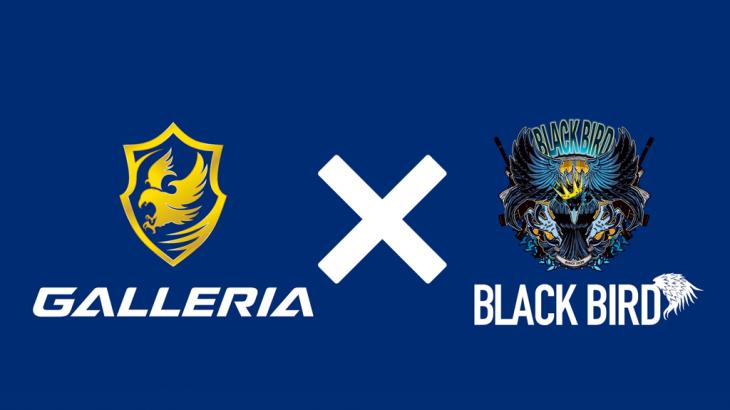 eスポーツチーム「BlackBird」が,GALLERIAとのスポンサーシップ契約を発表!